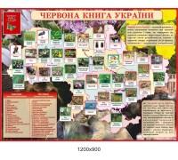 """Стенд з біології """"Червона книга України"""""""