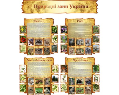 """Комплект стендів з географії """"Природні зони України"""""""